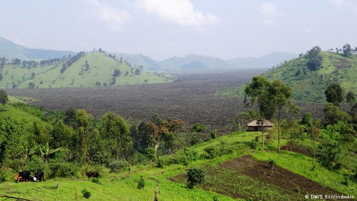 Virunga-Nationalpark Foto: Simone Schlindwein