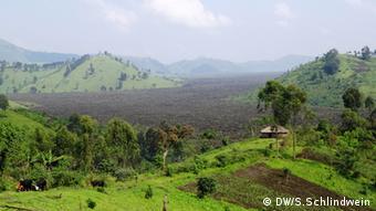 Holzkohle im Ostkongo