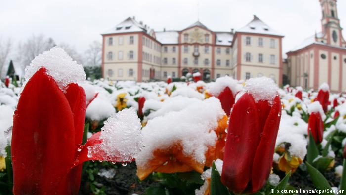 Wintereinbruch in Mainau