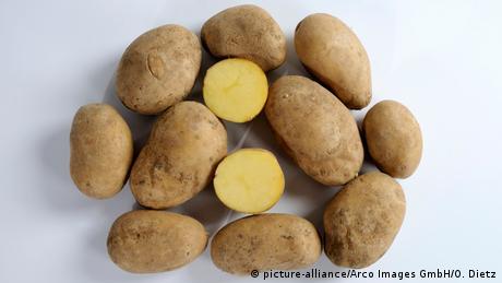 Deutschland Kartoffel des Jahres 2015 Heideniere