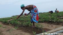 Dürre im Süden Angolas