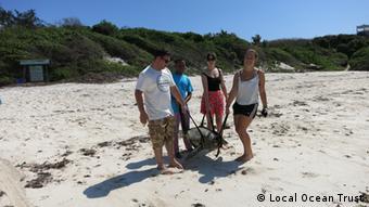 Local Ocean Trust volunteers releasing sea turtle