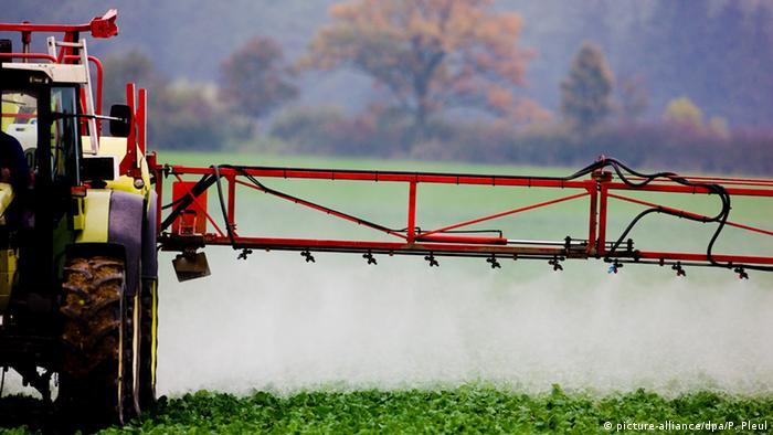 Produção agrícola aumentou mediante o uso intensivo de adubos químicos e pesticidas