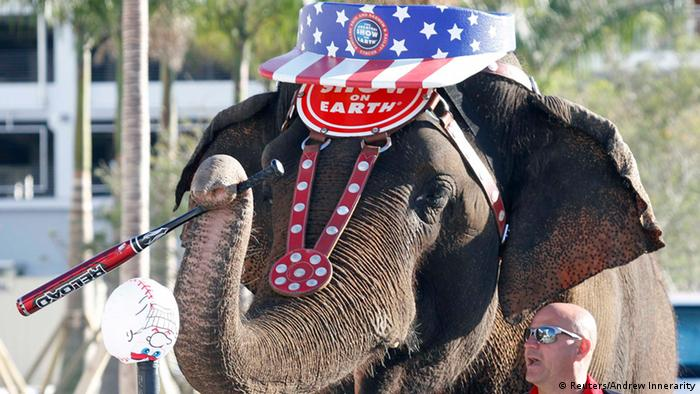 Ringling Brothers trennen sich von ihren Elefanten (Reuters/Andrew Innerarity)