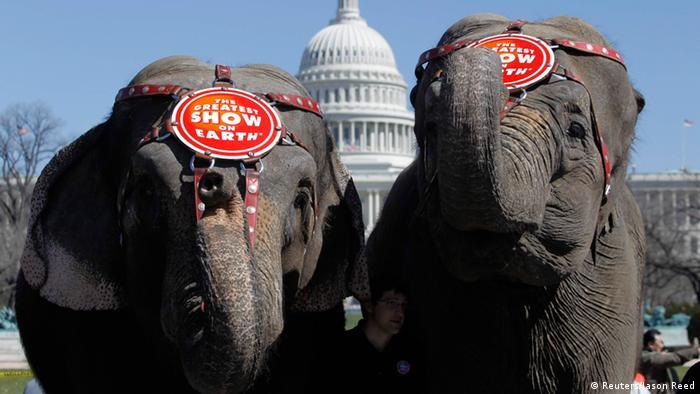 Ringling Brothers trennen sich von ihren Elefanten (Reuters/Jason Reed)