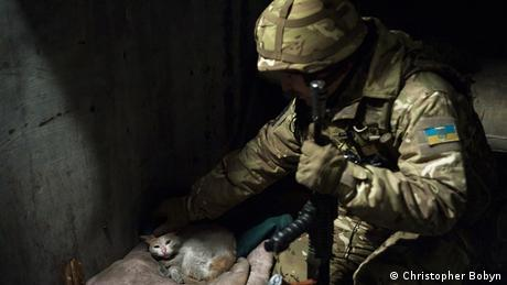 A Ukrainian soldier pets a dirty white cat