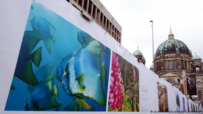 Exhibition of photos along the river Spree in Berlin