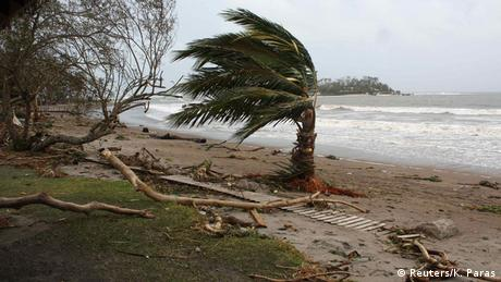 A palm tree is damaged on a beach near Port Vila, the capital city of the Pacific island nation of Vanuatu (photo: REUTERS/Kris Paras)