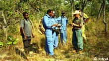 Siegfried Lächelt (à dir.) no mato na província do Niassa durante uma expedição de cartografia