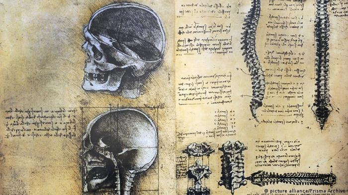 Estudos de anatomia de Da Vinci