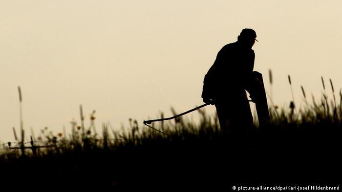 Im Gegenlicht schneidet ein Bauer hohes Gras mit einer Sense