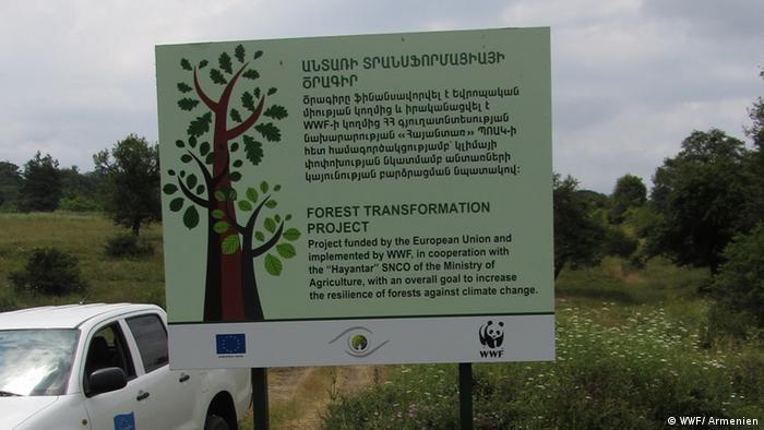 Informationstafel zum Wald in Nordarmenien