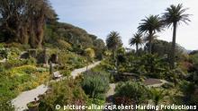 The Abbey Gardens, Tresco, Isles of Scilly, off Cornwall, United Kingdom, Europe Keine Weitergabe an Drittverwerter.