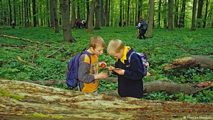 Deutschland Nationalpark Hainich (Bildergalerie) (Thomas Stephan)
