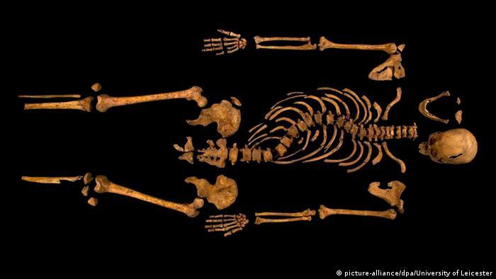 England Leicester Richard III. Skelett