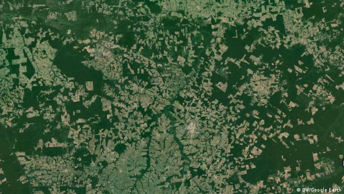 Google Earth der Sinop-Region in Brasilien (Screenshot)