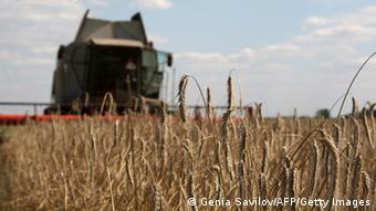 Земля як товар змусить виробників бути ефективнішими, кажуть аналітики