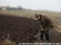 Сільськогосподарські роботи в Україні (фото з архіву)