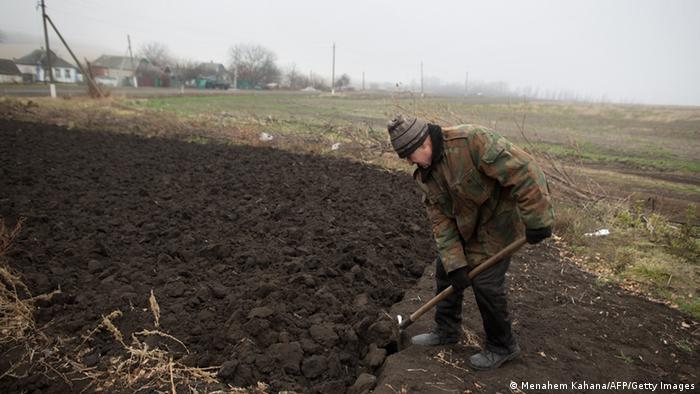 Пожилой мужчина вскапывает землю лопатой