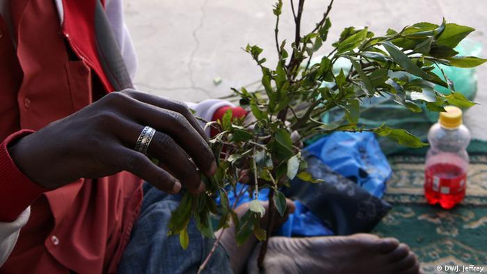 Alltagsdroge Khat in Somaliland (Foto: J. Jeffrey/DW)