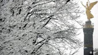 Die goldene Siegessäule, daneben ein schneebedeckter Baum
