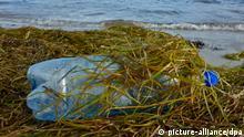 Plastikflasche am Ostseeufer