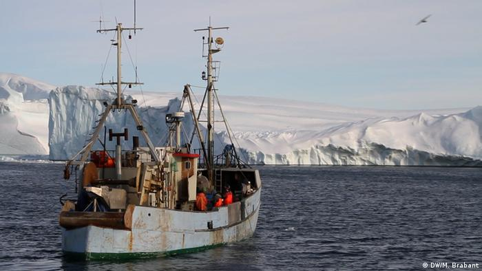 A boat of seal hunters sails along Greenland's icy coast