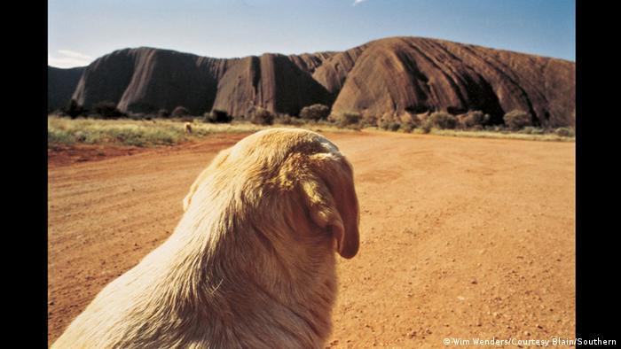 Foto von einem Hund vor dem Ayers Rock in der zentralaustralischen Wüste (Wim Wenders/Courtesy Blain/Southern)