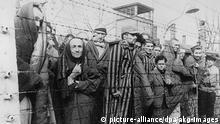 2-P75-K1-1945-84 (142406) KZ-Auschwitz/Häftlinge nach d.Befreiung Nationalsozialismus: Konzentrationslager. Konzentrationslager Auschwitz (bei Os- wiecim/ Polen), nach der Befreiung durch sowjetische Truppen am 26.1.1945: - Überlebende Häftlinge am Lagerzaun.- Foto, um Januar 1945. E: Prisoners by the fence / Auschwitz National Socialism: Concentration camps. Auschwitz (near Oswiecim, Poland), after its liberation by Soviet troops on 26 January 1945. - Liberated prisoners by the fence. - Photo, circa January 1945. F: Auschwitz/ Prisonniers ap. la libération National-socialisme: Camp de concentration. Camp d'Auschwitz (près de Oswiecim, en Pologne), après la libération par les troupes soviétiques le 26 janvier 1945: - Des prisonniers survivants à la clôture du camp. - Photo, vers janvier 1945.