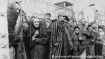 Where can i find interviews with holocaust survivors, in Polish, Russian or German?