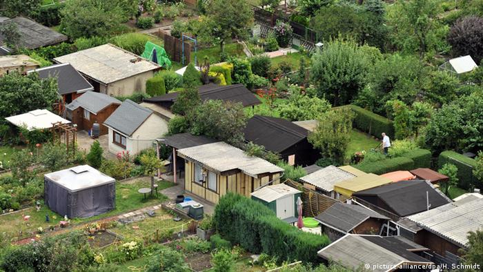 A aerial view of a German allotment garden (picture-alliance/dpa/H. Schmidt)