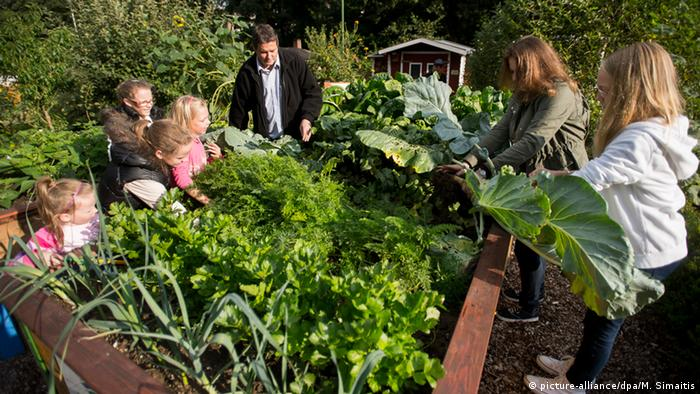 A family gardening (picture-alliance/dpa/M. Simaitis)
