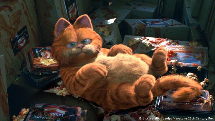 Bildergalerie Berühmte Katzen Garfield