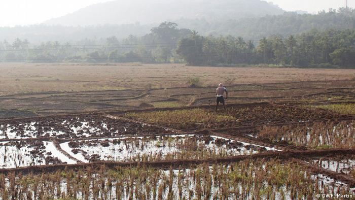 A farmer works in a field in Maharashtra