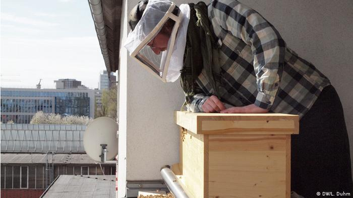 Jonas Schiffmann checking on bees on his Cologne balcony (Photo: Lisa Duhm)