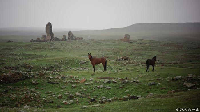 Horses roam among ruins