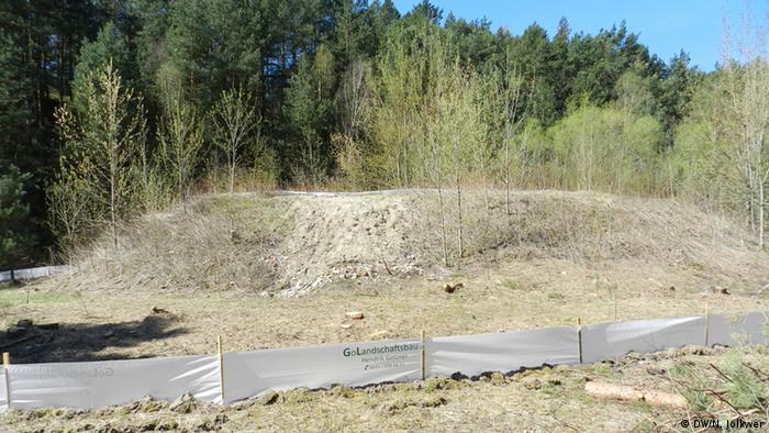 Холм, под которым покоятся останки монумента