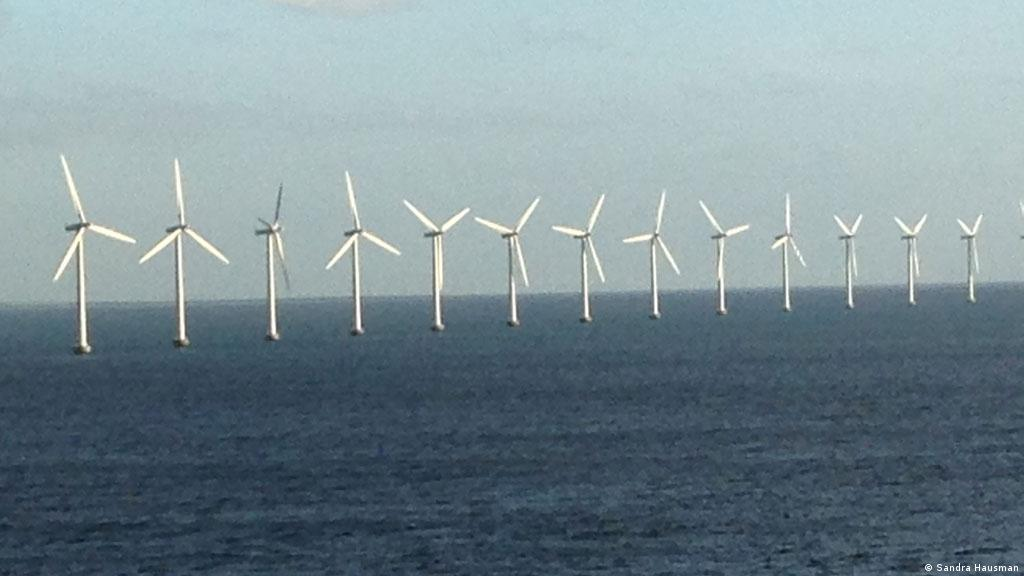 How do offshore wind farms affect ocean ecosystems?   Environment