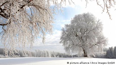Schwäbische Alb im Winter