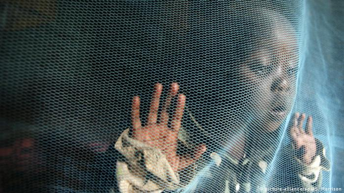 A child peering out behind a mosquito net