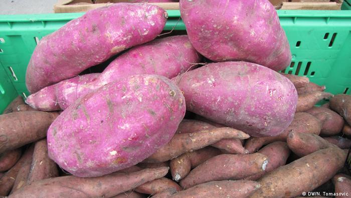 Süßkartoffeln von Ivan Sulog (DW/N. Tomasovic)