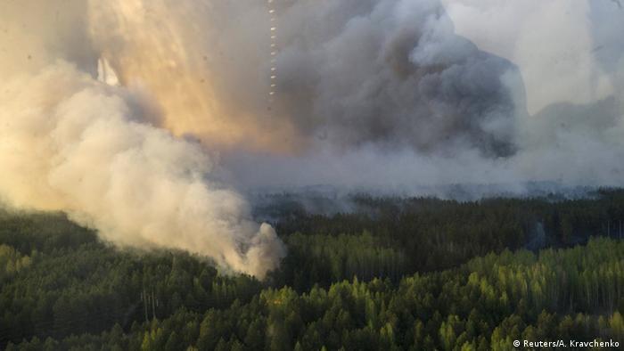 Лес, охваченный пожаром
