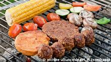 Deutschland Vegetarier Grillen Bratlinge