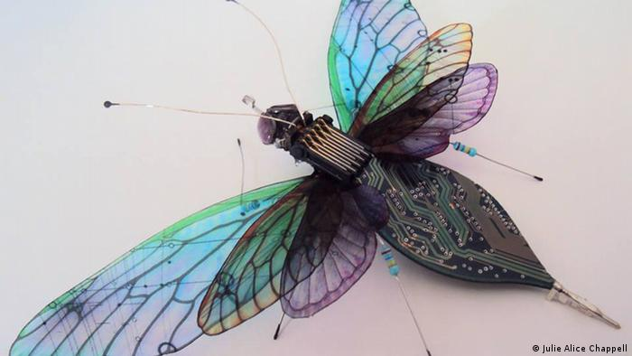 Photo: Insect made of electronic waste. (Source: Julie Alice Chappell)