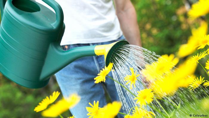 Symbolbild Gießkanne Garten Frühling