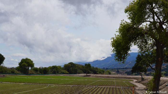 Clouds over the Salinas Valley (Photo: Fabian Schmidt)