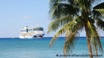 A cruise ship on the ocean, with a Palm tree in the foreground