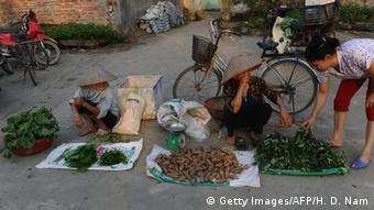 Vietnam′s fight against hunger - a success story | Asia| An