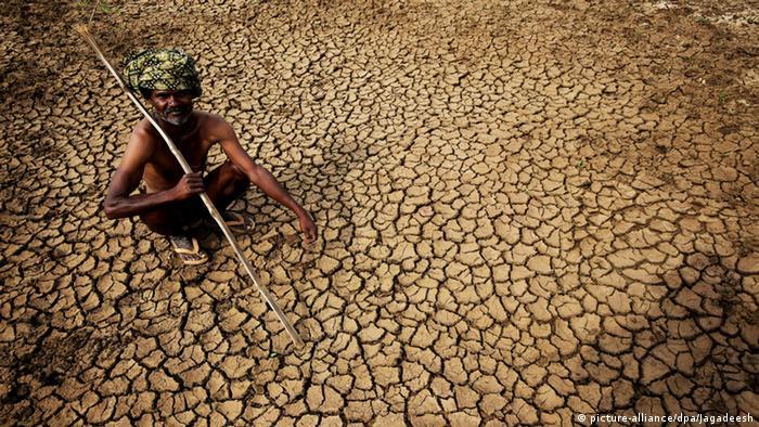 Indien Hitzewelle (picture-alliance/dpa/Jagadeesh)