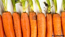 Carrots (Colourbox)